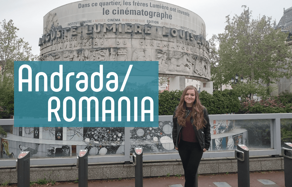 International Students in Lyon: Feedback 6
